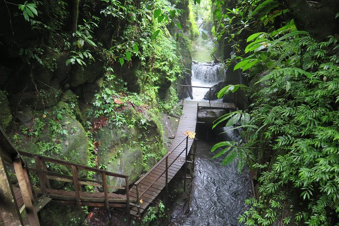 We made access to a previously hidden Canyon in the heart of Bali. Now you can explore Bali's fauna nd flora while floating down a crystal clear stream in your own tuber and discover many different species of plants and animals. At some places we provided suspension bridges and wooden footpaths pass waterfalls and obstacles in the canyon, making it a truly Indiana Jones' like experience. A special bonus is our approx. 100 meter long flying fox, which enables you to actually fly through the canyon. To get to and from the canyon we use special off road vehicles (already included in the tour price). At the end of the tour our guests will be picked up again directly at the ending point (no torturous stairs climbing is needed!)