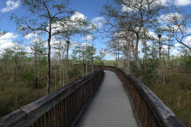 Private Tour: Everglades Adventure Day Trip from Ft Lauderdale, Fort Lauderdale, FL, ESTADOS UNIDOS