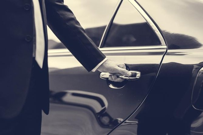 Bodrum Airport Private Arrival Transfer to City center&Torba&Gumbet Hotels, Bodrum, TURQUIA