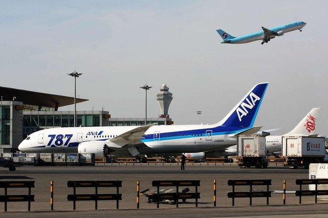 Traslado privado a la llegada: del Aeropuerto Internacional de Beijing (PEK) al hotel, Beijing, CHINA