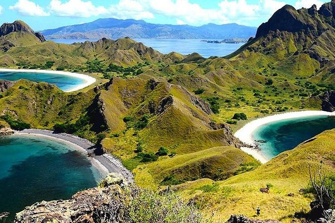 See the world's largest lizards in their spectacular natural habitat at Rinca Island on this adventurous 3-day excursion, accompanied by a private guide. Rinca Island is the second biggest island in the Komodo island and has the second biggest population of Komodo dragons. Komodo Island is one of the few places in the world where you can see komodo dragons in their natural habitat. This 3-day back-to-nature adventure offers plenty of wildlife-spotting opportunities; living on standard board 3 days 2 nights stay in Comfort Cabin with AC, and enjoy trekking, Hunting Komodo Dragons, hunting sunset, swimming and snorkeling<br><br> Fly from Bali to the beautiful Flores Island then sail the iridescent ocean on a boat before disembarking at the idyllic Rinca Island to embark on an exhilarating hike. See wild Komodo dragons up close and gain fascinating insight into their behavior and physiology from your accomplished naturalist guide.