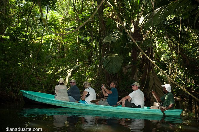 Relaxing and charming trip for about 2 hours and half, sailing in Canals of Tortuguero using the traditional way of historical transport!