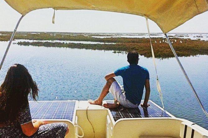 MORE PHOTOS, Ria Formosa Eco Boat Trip from Faro