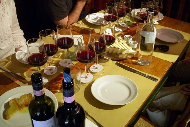 Etna Tour and Lunch in a Winery with Wine Tasting, Catania, Itália