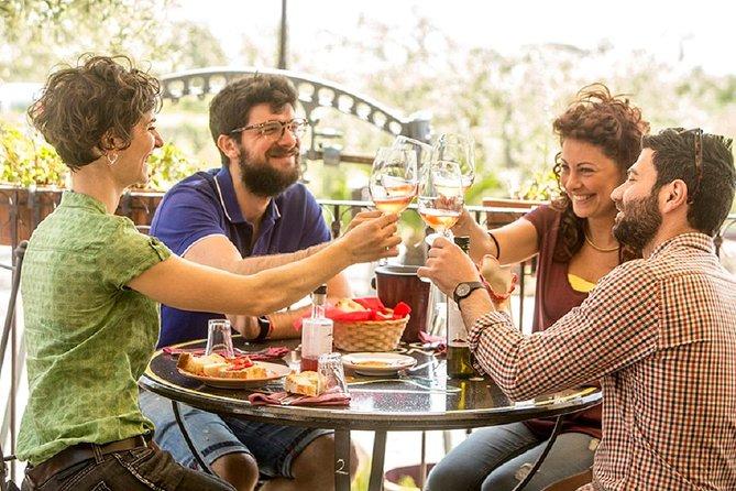 Mount Vesuvio Organic Wine Tasting & Lunch with Transfer from Amalfi Coast, Amalfi, ITALY