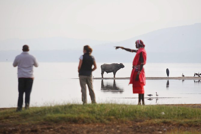 Visit Lake Nakuru National Park and get a chance to do a game viewing drive round the lake. There are magnificent views of the entire park from Out Of Africa view point. There are plenty of Pink Flamingos, Rhinos, Buffaloes and Waterbucks among other animals. Enjoy a morning bush breakfast at one of the picnic spots after a game drive hopefully you will have spotted a hunt.