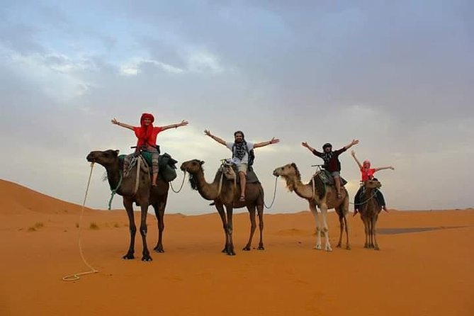 Overnight Small-Group Desert Tour from Fez with Camel Ride and Desert Camp, Fez, Morocco