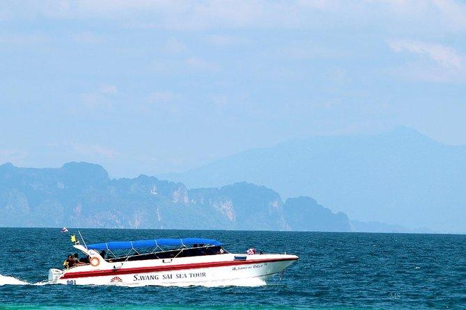 Excursión de esnórquel de día completo en Koh Rok y Koh Haa desde Krabi, Krabi, TAILANDIA