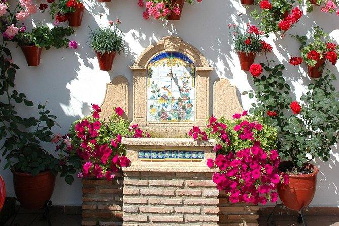 Tour y Entradas a los Auténticos Patios de Córdoba, Cordoba , ESPAÑA