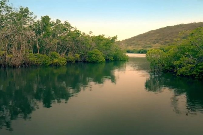 Excursión en barco a la bahía bioluminiscente de La Parguera desde San Juan con posibilidad de bañarse, ,