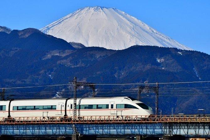Private Walking Tour of Hakone. Price per group, Hakone, JAPÃO