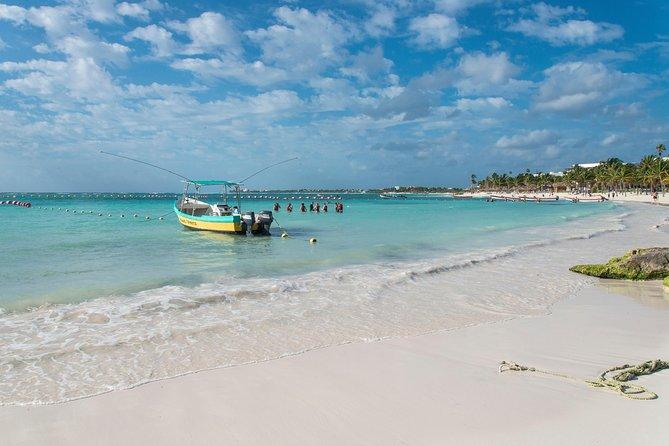 Half-Day Sea Turtle and Cenote Snorkeling Tour from Cancun & Riviera Maya, Playa del Carmen, MÉXICO