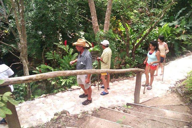 Tour Parque Botánico Hagia Sofia con alimentos, Huatulco, MÉXICO