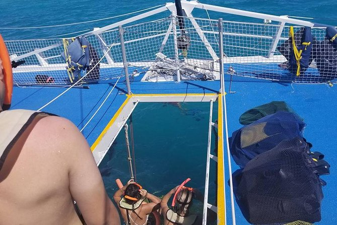 Passeio de barco e mergulho com snorkel em Key West a partir de Miami, Miami, FL, ESTADOS UNIDOS