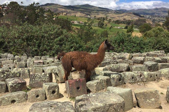 Excursión privada a las ruinas de Ingapirca, Cuenca, ECUADOR