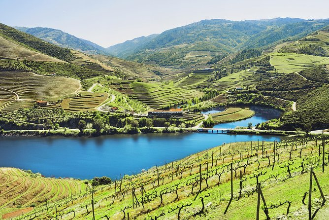 This 9-hour tour will show you the best of Douro, the first Portuguese wine region and UNESCO World Heritage Site. Learn about Douro and it's evolution all over centuries. Marvel at the sculpted landscape on the best viewpoints over the Douro Valley. Take a 1-hour river cruise, learn about the production of olive oil at a local producer property, visit two Port wine estates (wine tasting included) and enjoy the lunch at a typical portuguese restaurant.