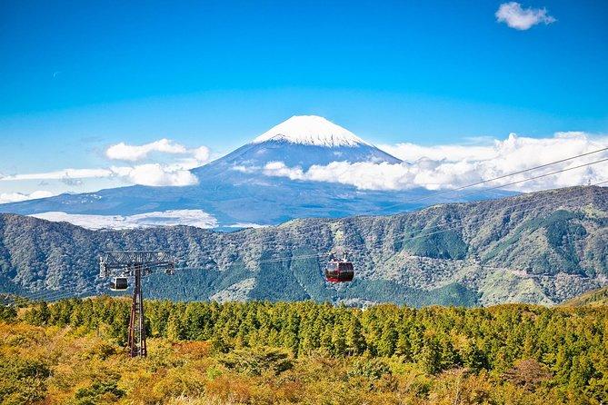 Mt Fuji and Hakone 1-Day Bus Tour by Bus, Tóquio, JAPÃO