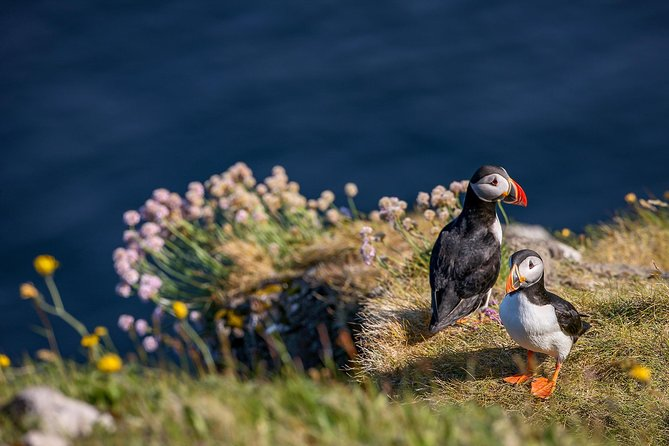 Trælanipa | Lake Above The Ocean + Photography Tour, ,