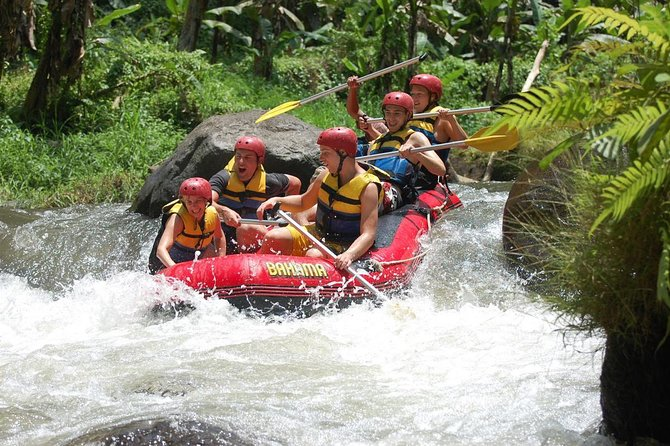 Ayung White Water Rafting during dry season is great fun for the entire family, Just enjoy the wildlife as you meander down a safe river with great staff. If you would like to discover a hidden waterfall than you can find it here, scenery and wild life that you can get here such as rice field, jungle, kingfisher and water fall. If you do Ayung Rafting Bali than you will enjoy Bali rain forest and very well maintain rice field. You may also able to see wild life on Bali rain forest such as beautiful Blue Javan Kingfisher. Ayung Rafting offer a very unique sensation that you won't get it on other places. The river has clear water and very fresh if you would like to swim, Ayung River has 10 kilometers route and 2 hours rafting adventure that you will get. The river offer class II – III level rapids which is very appropriate for beginner and children. Professional rafting guide is always accompanied you and give you instructions on things to do during rafting.
