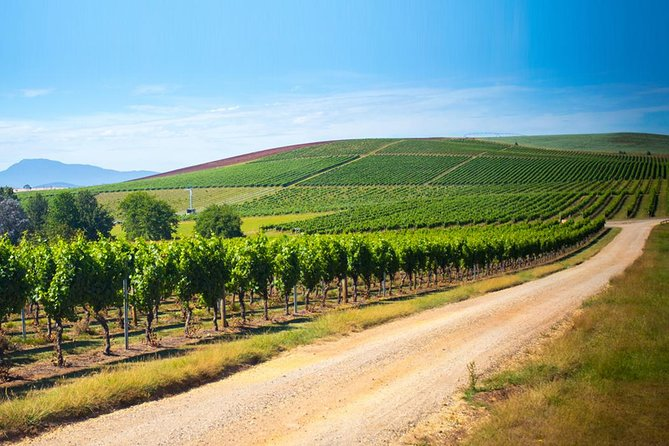 Our most popular Tamar Valley Wine Tour is a relaxing full day tour and is inclusive of a delicious lunch and complimentary glass of wine. <br><br>For the Full Day Tamar Valley Wine Tour, we pick you up from your Launceston accommodation. You are then personally driven to each vineyard in our comfortable, air-conditioned vehicle by a fully accredited, friendly guide. We normally visit at least five vineyards of various styles and sizes on this tour, but you set the pace.<br><br>At the vineyards you will have the opportunity to meet & engage with the winemakers and cellar door experts. You are able to take the experience home and purchase wines at each of the vineyards we visit. Freight to your home can be arranged if you wish.<br><br>All your wine tastings and lunch are included in the price of this tour.  Following your day out, we will drop you off at your Launceston accommodation.