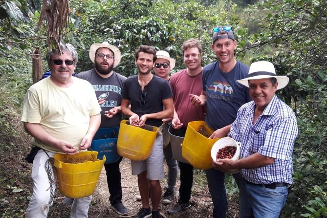 Half-day Coffee Plantation Private Tour: Learn everything about coffee with us, Medellin, COLOMBIA