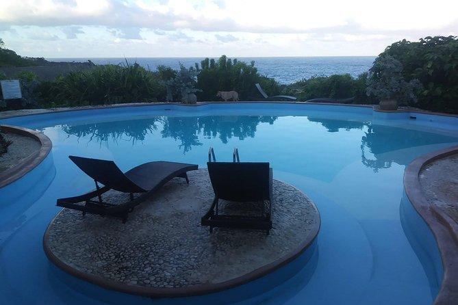 Peregrine Eco Retreat, Kingston, JAMAICA