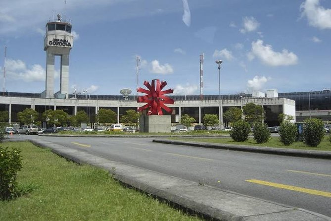 MÁS FOTOS, Recogida en el aeropuerto