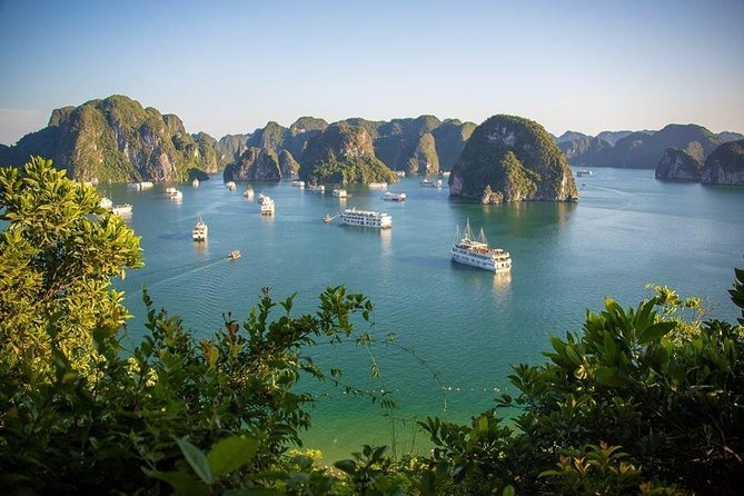 "A day cruise on the DRAGON KING Journeys is the best choice for your to experience the magnificent Halong Bay with our ""all-in-one"" itinerary for a limited time schedule. You will not only explore one of the most beautiful cave in Halong Bay, but will also having chance to...<br>- Bus transfer by Road: pickup guest from 7:15am<br>- Bus transfer by Highway: pickup guest from 8:15am (start the trip with 2,5 hours to Ha Long bay - Tour end: 8:30pm)."