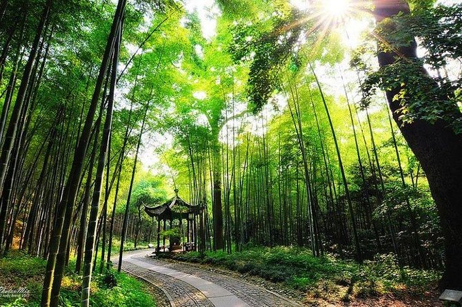 Want to get away from bustle and hustle city, and be surrounded by greens and fresh air? This half-day private tour is a great way to get your body fully benefited from negative oxygen ions. Have a easy hike in beautiful Yunxi Zhujing Scenic Resort (also known by Yunqi Zhujing) , which is full of bamboo. Followed by a tea plantation experience in Meijiawu or Longjing Tea Village where you get to know the tea culture, enjoy tea tasting and local lunch. All entrance fees, private guide and private vehicle service are all inclusive.