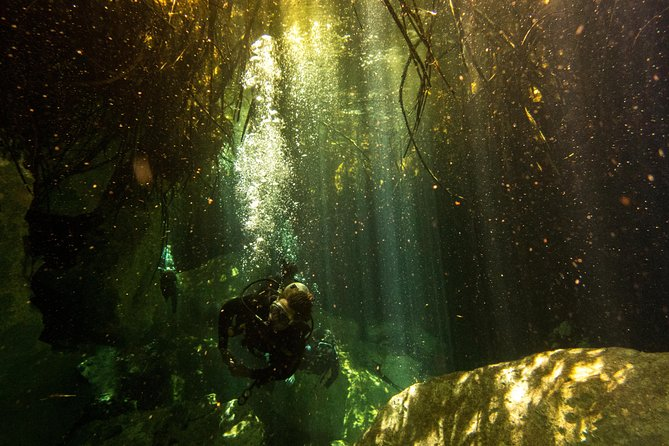 3 Cenote Dives - Casa & Dos Ojos, Tulum, MÉXICO