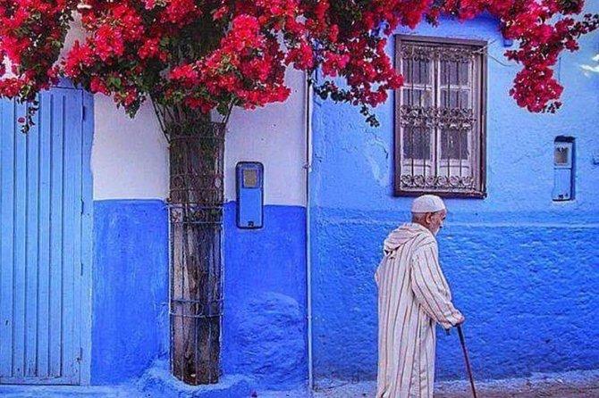 5 Day Northern Morocco Tour, Casablanca, Morocco