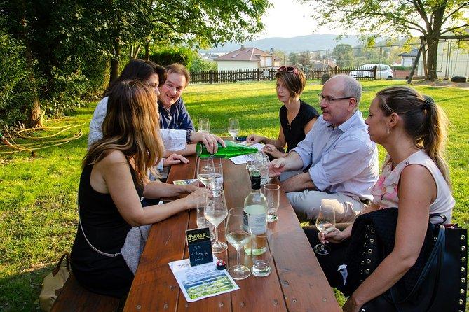Half-day Countryside Wine Tour near Vienna, Viena, AUSTRIA