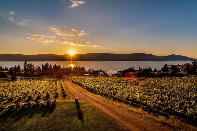 Kelowna Wine, Vines and Distillery Tasting Tour, Kelowna y Okanagan Valley, CANADA