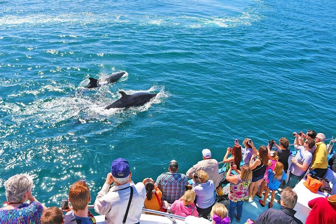 2 Days Tour to Mirissa Whale Watching & Udawalawe Safari From Bentota & Nearby- All Inclusive, Bentota, SRI LANKA