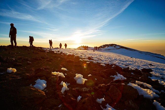 MORE PHOTOS, 8 Days Kilimanjaro Trek, Lemosho Route