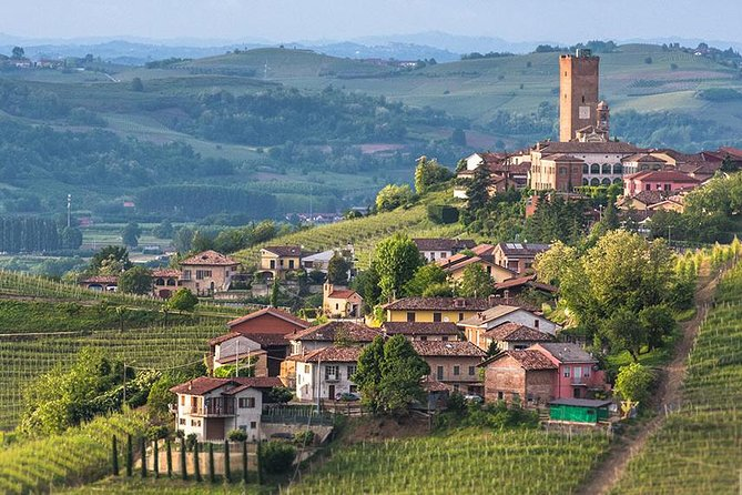 Enjoy Piemonte Vineyards - Langhe Area by yourself !! (From Turin City) <br><br>Our Chauffeur services offer our customers a high-class and extra-comfortable journey in our <br><br>Business Car Mercedes Benz E Class or similar. <br><br>Hop aboard your Business Car at Turin City Center and enjoy this 8 hs disposal to travel and visit the Langhe Area of Piemonte where you will find some of the best wines of Italy, visit the vineyards and the beautifull little towns that comprise this area. <br><br>Pick up and drop off in your hotel or accommodation in Turin City Center