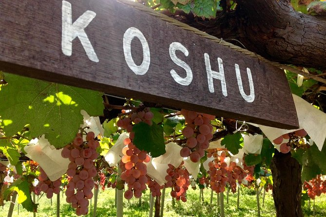 Koshu Wine Tasting and Vineyard Sightseeing Private Tour in Yamanashi, Tóquio, JAPÃO