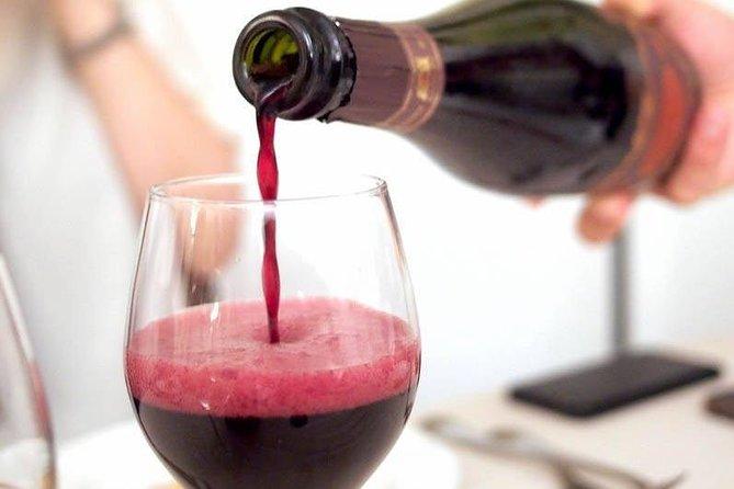 Lambrusco making: winery tour, Parma, ITALIA
