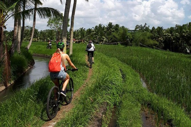 This is our most popular 4 day mountain bike adventure. We cover lots of ground and explore some of the best trails and most beautiful natural sights on the island. This trip is just right. It's not to hard and not to easy so that both experienced and intermediate mountain bikers will be able to enjoy this trip. If needed we can make the daily distances a bit longer (or shorter) and together with our guides we will make adjustments as we go.<br><br>If you don't have a full week to spend but you still want to do as much riding as you can in a shorter package then this trip is perfect for you.