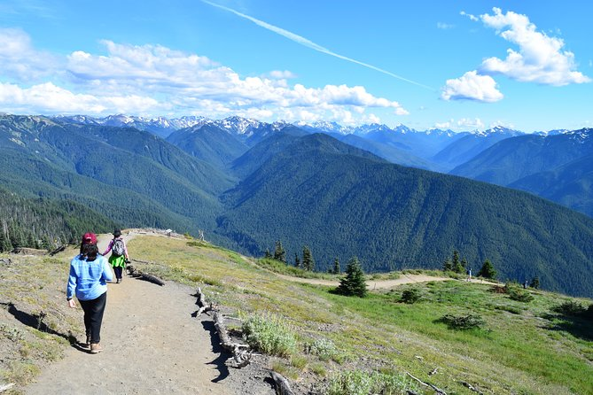 MAIS FOTOS, Hurricane Ridge Guided Tour in Olympic National Park