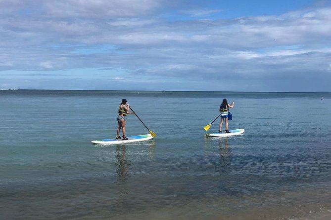 MÁS FOTOS, PaddleBoard Rental in Puerto Rico