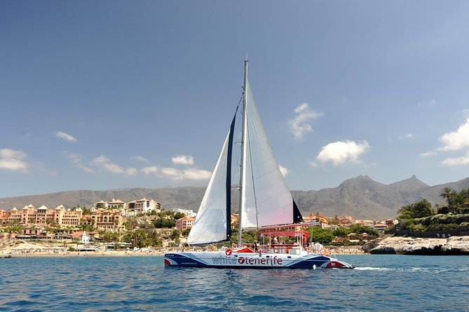 Excursión de 5 horas de avistamiento de ballenas en un exclusivo catamarán con catering gratuito, Tenerife, ESPAÑA