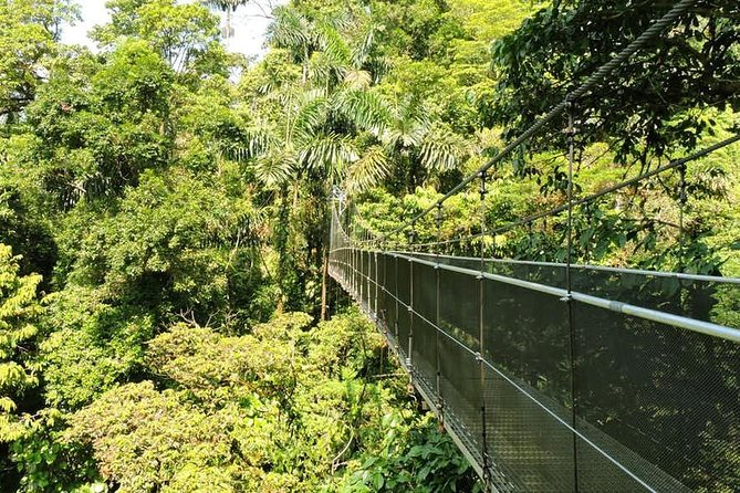 4-in-1 Arenal Hanging Bridges and Ecotermales Hot Springs Tour, ,
