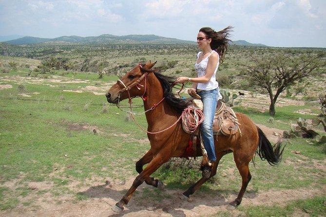 Aventura de equitación por la noche, San Miguel de Allende, MEXICO