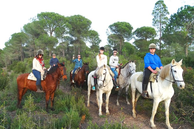 Andalusian Countryside Private Day Trip from Cádiz, Cadiz, ESPAÑA