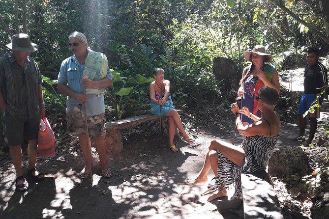 Mexican History, Coffee Plantations and Waterfalls Tour from Puerto Escondido, Puerto Escondido, MÉXICO