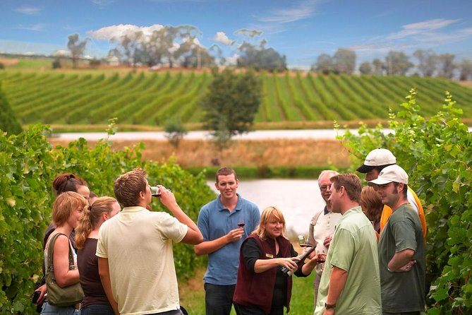 Discover Victoria's Yarra Valley wine region on this day trip from Melbourne. With an expert guide to act as your wine tutor, visit four of the area's best-known wineries: Steels Gate Winery, Balgownie Estate, Yering Farm and Domaine Chandon. During your series of wine tastings and an included vineyard lunch, you'll find out why the Yarra Valley is one of Australia's favourite wine regions, loved for its picturesque scenery. Choose from several pickup points in central Melbourne. (Itinerary subject to change without notice)