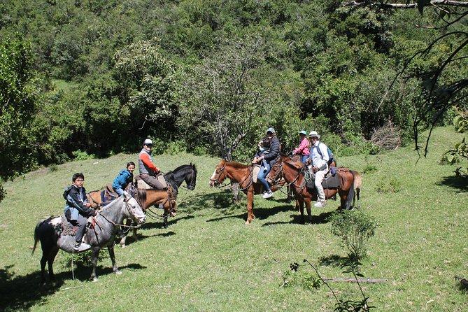 Roses & Horses Ride Private Day Trip from Quito, Quito, Equador