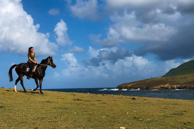 Experience spectacular viewsof theAtlantic coast on a 2 hour scenic horseback ride in St. Lucia. With views of country hillsidesandhappy grazing cows you're also sure to spot a local fisherman making his daily catch. You will see views of Epouge bay and colourful camping cottages dotted along the peninsula before you ride down to beach where you will see the tiny Lapis island nestled in the bay. Here you canswim with your horse in the refreshing Atlantic waters and experienced riders can enjoy a canter alongLapin Bay.