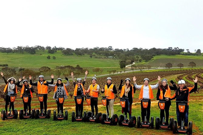 Venture into the vineyards amongst 100-year old bush vines. Stop for a photo at the top of the vineyard and witness spectacular 360 degree views of the Barossa Valley.